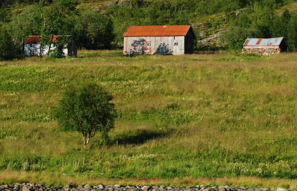 Old houses in Brattfjord (perhaps Peder Olsen built the fundament to the small house at right)